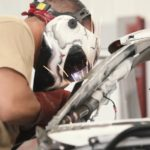 Automotive Repair Market Collision Repair Industry Statistics