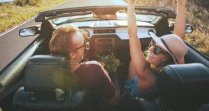 Company Dice Up Your Life Car Rental Business Plan Pdf